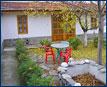 Guest House Jurasic Park